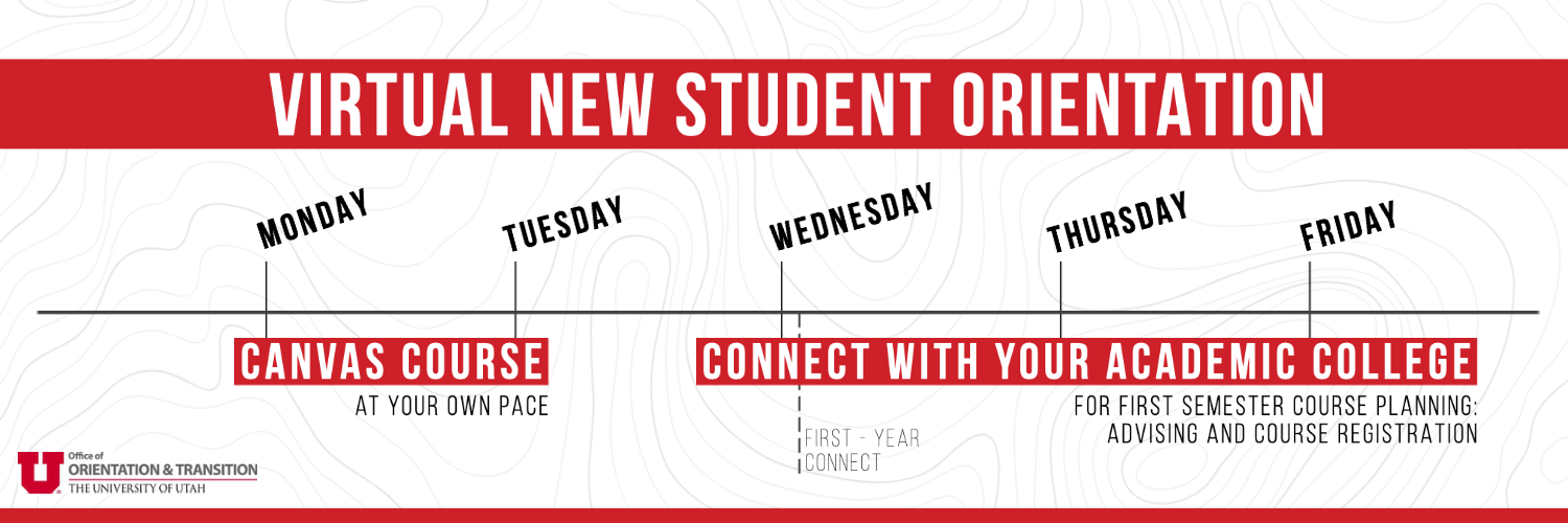 First Year NSO Timeline
